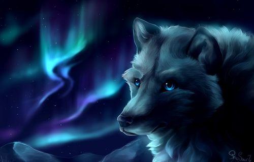 Волки и лисы аниме картинки